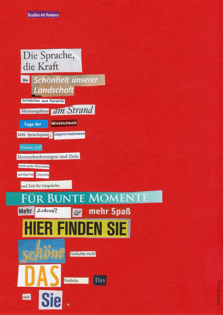 Gedicht Collage_Draußen mit Kompass_Safiye Can